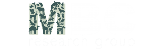 MBC research group